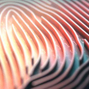Credit Card Finger Print Future|Credit Card Finger Print|Closeup of a credit card with a gold chip